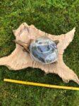 Lávové sklo Eridanus